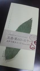 2011110912020000.jpg